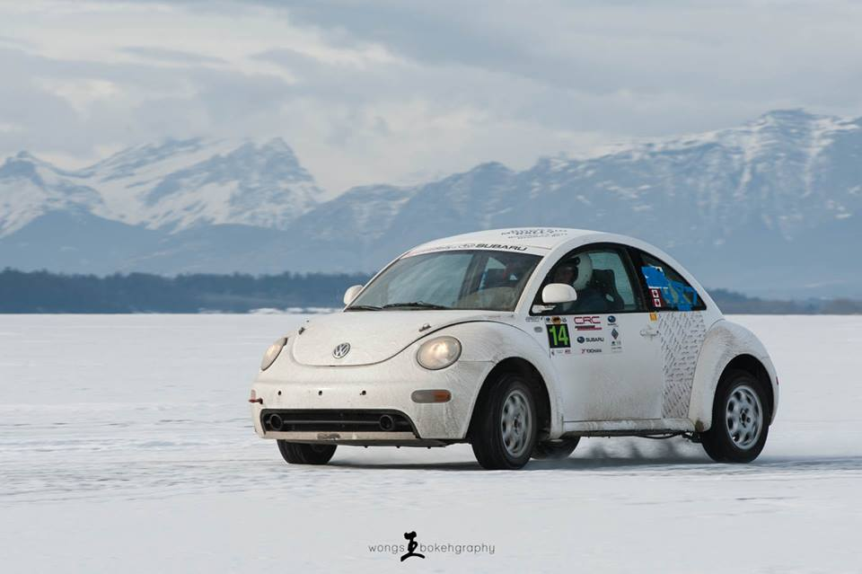 2001 volkswagen beetle for sale in calgary 5000. Black Bedroom Furniture Sets. Home Design Ideas