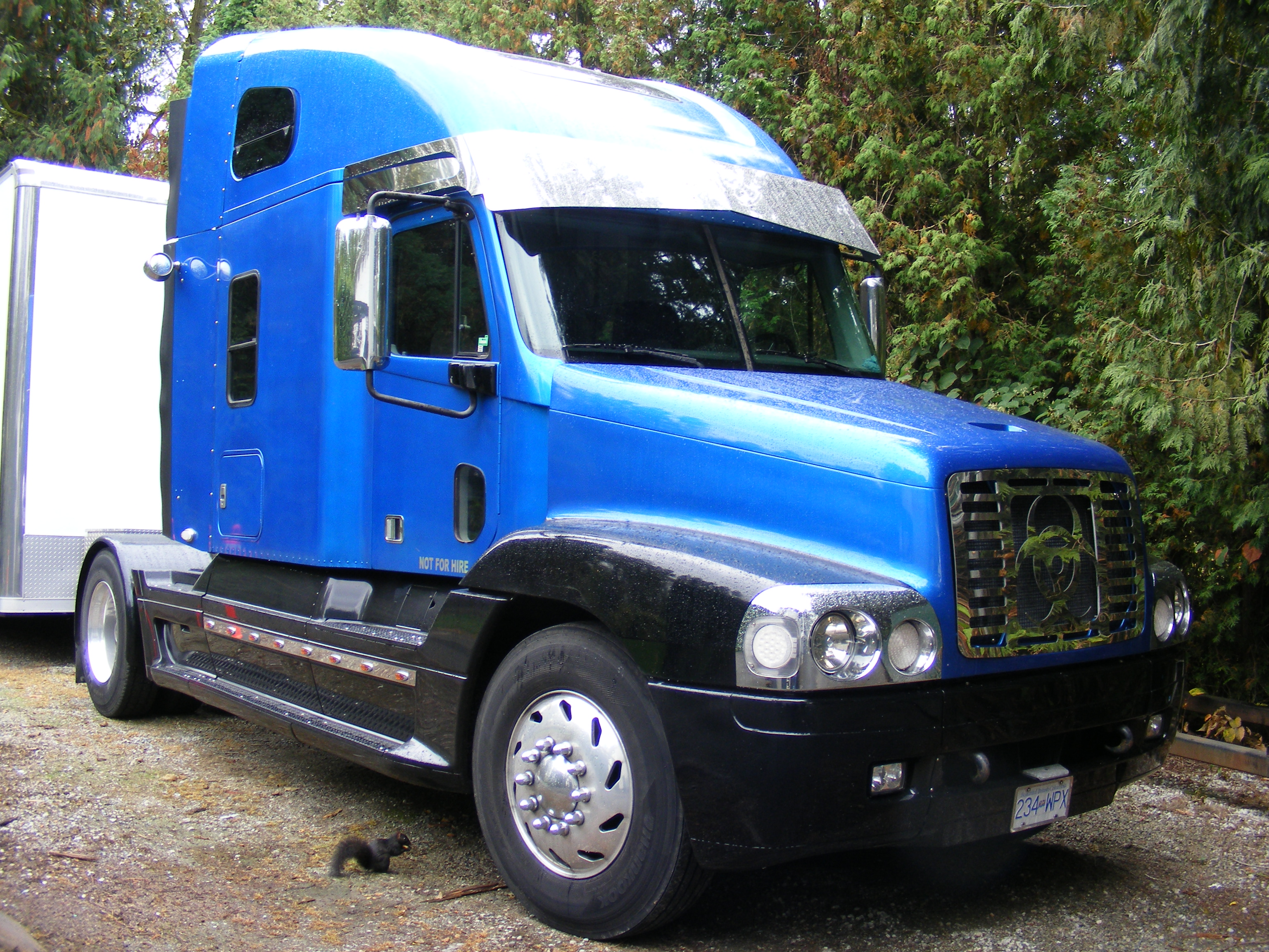 1999 Freightliner Century Classic Rv Hauler For Sale In
